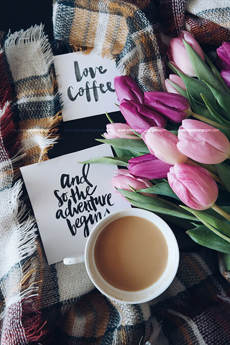 những lợi ích không thể ngờ từ cafe cho dân văn phòng