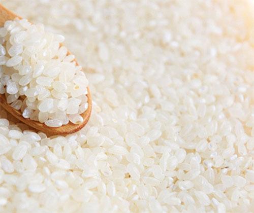 loại gạo nào ngon nhất hiện naya
