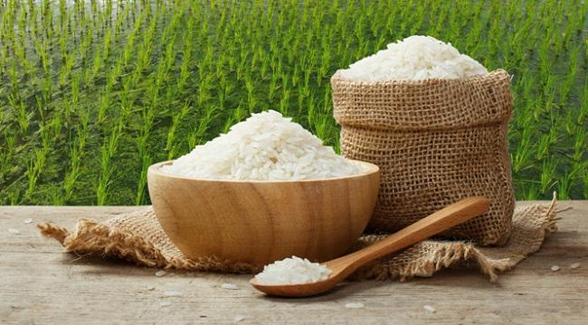 Nên nhập gạo ở đâu